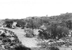 Hiszpania rok 1938. Bateria haubic 100 mm z włoskiego Corpo Truppe Volontarie (CTV) w gaju oliwnym.