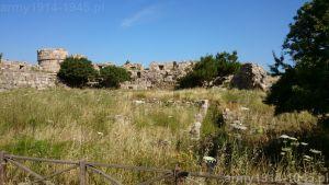 52. Widok w kierunku północno-zachodnim. Tu pod warstwą roślinności znajdują się ruiny wewnętrznej zabudowy zamku. Widoczna wieża oznaczona na planie nr 9.