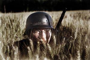 Żołnierz dywizji Grossdeutschland z drużyny zwiadowczej obserwuje pole w lipcowym słońcu. Okres w którym dobiegała końca ogromna operacja Bagration .