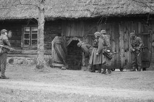 b_300_0_16777215_00_images_Rek1_Nordland_nordland_26.jpg