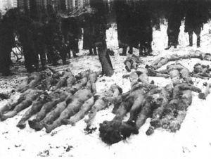 Wieś Połowce, powiat Czortków, woj. tarnopolskie. Służba leśna przy zwłokach 27 Polaków zamordowanych przez UPA. 16 stycznia 1944 r.